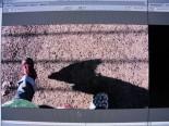 Videokemp 2011